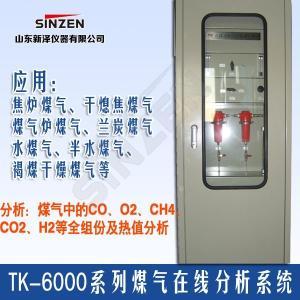 TK-6000型焦炉煤气氧含量在线分析系统SINZEN山东新泽仪器产品图片