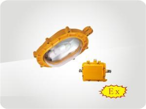 BFE8120内场防爆应急泛光灯产品图片
