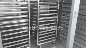 CT-C系列热风循环烘箱产品图片