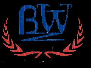 上海贸和荣国际贸易有限公司公司logo