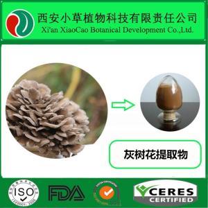 灰树花提取物10:1 灰树花多糖 舞茸提取物纯天然植物提取
