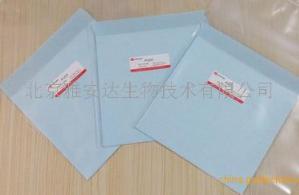 PVDF膜 密理博Millipore IPVH00010 約15cm*13.5cm 0.45um產品圖片