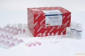 RNeasy MinElute Cleanup Kit (50)QIAGEN74204现货产品图片