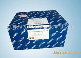Qiagen 69504,血液,组织DNA提取试剂盒