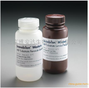 WBKLS0050 | Immobilon Western HRP 底物,2 x 25 mL