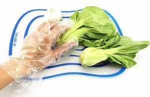 一次性食品专用PE塑料手套 产品图片