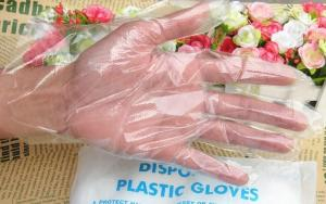 一次性透明手套生产商 产品图片
