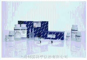 低价促销高质量Qiagen 59824|快速亚硫酸氢盐转化试剂盒 (50)|EpiTect Fast DNA Bisulfite Kit (50),库存充足产品图片
