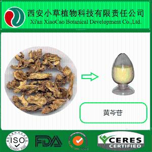 黄芩提取物生产厂家
