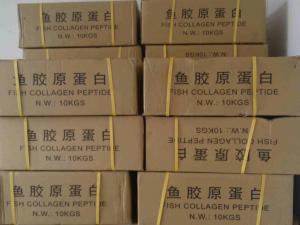 鱼胶原蛋白 产品图片