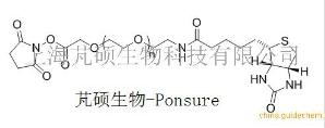 活性酯PEG-生物素