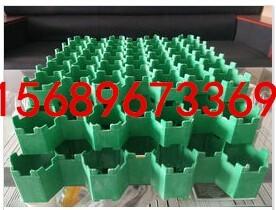 上海植草格厂家