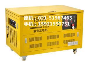 15kw汽油发电机.三相380V发电机