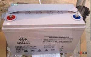 双登蓄电池6-GFM-100