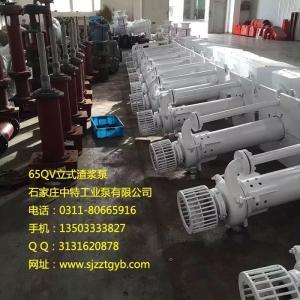 65QV-SP液下渣漿泵 立式渣漿泵 襯膠渣漿泵