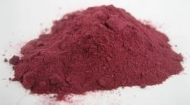 蔓越莓果汁粉  蔓越莓果粉  沃特莱斯生物