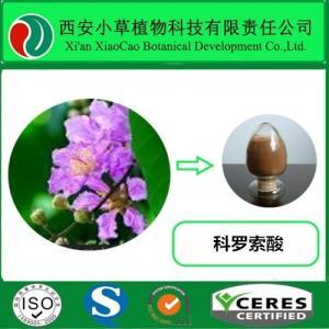 巴拿巴提取物科罗索酸20%