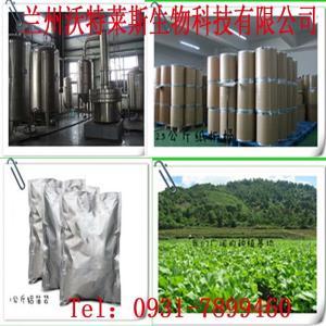 优质黑蒜粉 黑蒜提取物   生产厂家  欢迎采购 产品图片