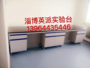 滨州实验台滨州通风柜滨州实验仪器淄博英派为您服务产品图片