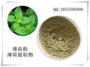 薄荷粉      药食同源原料            产品图片
