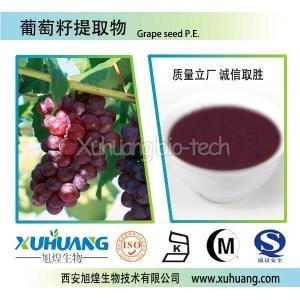 供应优质葡萄籽提取物