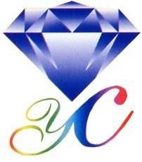 湖北远成赛创科技亚虎777国际娱乐平台孝南分公司公司logo
