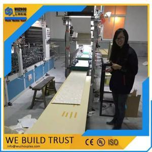 PVC集成快装墙板挤出生产线
