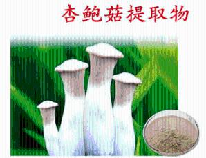 杏鲍菇多肽  杏鲍菇肽粉85%   杏鲍菇多糖