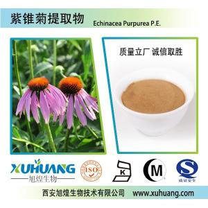 SC生产厂家现货供应紫锥菊提取物  多酚 菊苣酸