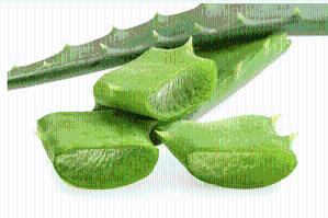 芦荟浸膏 1.0-1.3 芦荟流浸膏 芦荟提取液