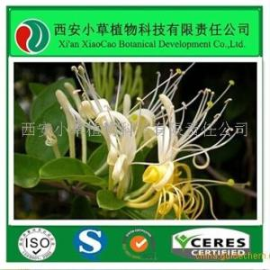 金银花生粉生产厂家 产品图片