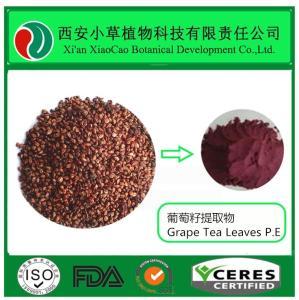 原花青素95%葡萄籽提取物 产品图片