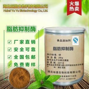 优质食品级脂肪抑制酶价格