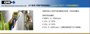 全量程的可燃气体检测*都有那些型号(英国GMI的GT-44)