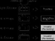 NV诺如病毒核酸测定试剂盒(pcr荧光法)