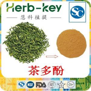 茶多酚98% 绿茶提取物产品图片