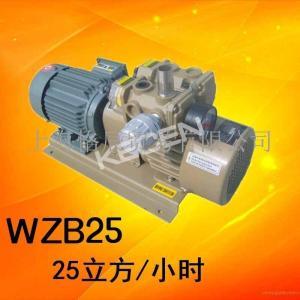 好利旺真空泵KRX5-P-V-03