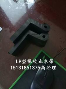 LP-60型橡胶止水带 闸底平板止水橡胶 闸门底止水