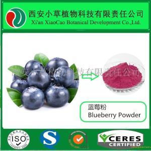 蓝莓粉厂家直销