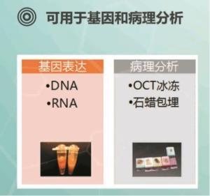 活肿瘤组织冻存试剂盒产品图片