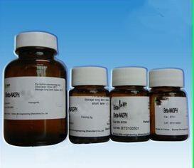 食品级β-烟酰胺单核苷酸作用