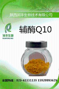 辅酶Q10厂家