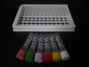猪干细胞因子(SCF)ELISA试剂盒96T/48T