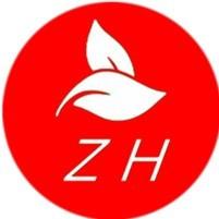 北京中环瑞兴科技有限公司公司logo