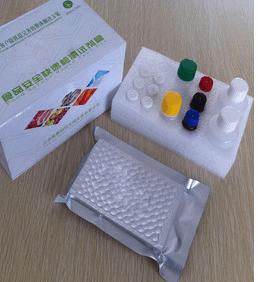 人GSS试剂盒,谷光甘肽合成酶(ELISA)方法 产品图片