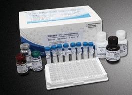 人CLDN9试剂盒,封闭蛋白9(ELISA)方法 产品图片