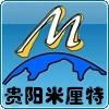 贵阳米厘特仪器仪表有限公司公司logo