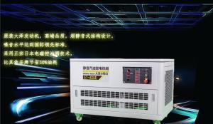 哪个牌子汽油发电机好|12kw大泽汽油发电机 产品图片