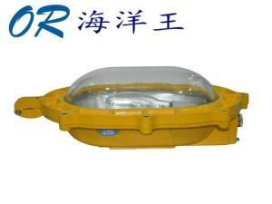 供应海洋王BFC8120(海洋王卤素灯)