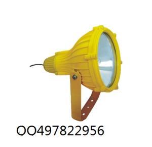 海洋王BTC8210防爆投光灯产品图片